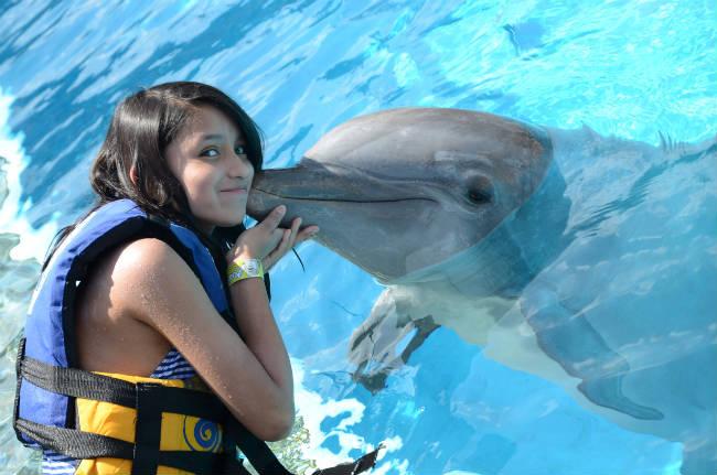 Un súper regalo para los niños: nado con delfines
