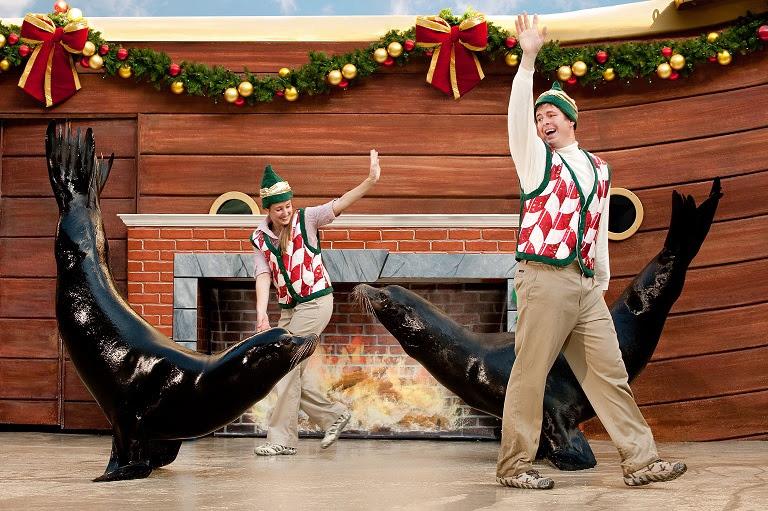 Nuevas Experiencias Familiares para Celebrar la Navidad en los Parques SeaWorld de la Florida