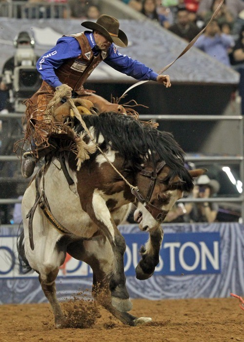 Rodeo y Feria ganadera en Houston